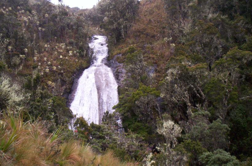 2004-01-01 Guandera (127)