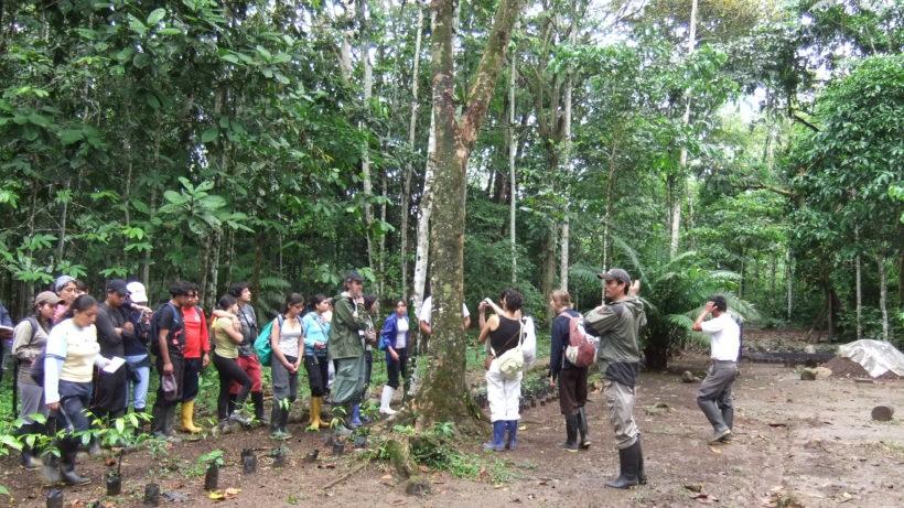 Fotos Grupos Univ.Central 013